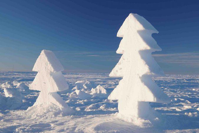 Les arbres sculptés par Nander ans Sainan pour Noël (Photo Nander Wever)