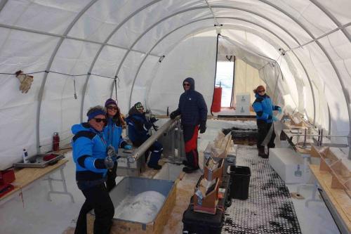 Les premiers mètres de la carotte de glace